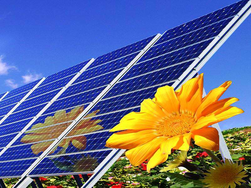 The cash flow solar developments create is not dependent on weather patterns or crop yield.